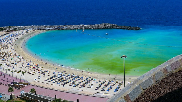 beach-2855578_640