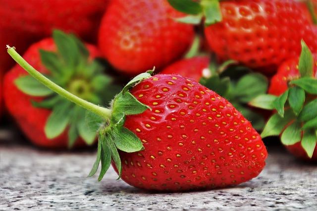 české jahody